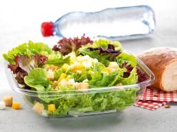 Gärtnerinnen-Salat